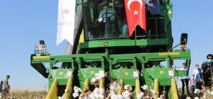 Diyarbakır'da pamuk hasadı başladı Vali Karaloğlu biçerdöverin başına geçerek ilk hasadı gerçekleştirdi