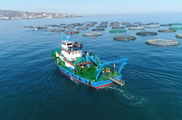 """Trabzonlu kültür balığı yetiştiricileri köstek değil destek bekliyor Trabzon İç Su Ürünleri Yetiştiricileri Birlik Başkanı İlker Yıldırım: """"Geçen yıla göre ihracatımızda miktar bazında yüzde 45, döviz girdisi olarak ise yüzde 47'lik bir artış gerçekleşti"""" """"Arsin ilçemizde bulunan firmalarımızın depoları, lehimize çıkan mahkeme kararını bile beklenmeden yıkıldı; Biz destek beklerken yapılan bu davranışı ihracatçılar olarak hak etmiyoruz"""""""