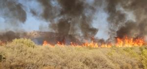 Aydıncık'taki orman yangını söndürüldü