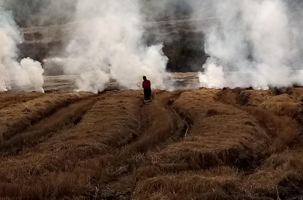 Osmancık'ta anız yangını
