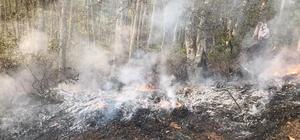 Orman yangınına müdahale ederken yanarak can verdi