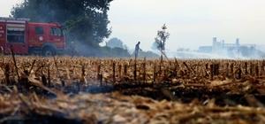 Sakarya'nın korkulu rüyası anız yangınları halkı bezdirdi Rüzgarında etkisiyle biranda büyüyen anız yangını evlere metreler kala söndürüldü