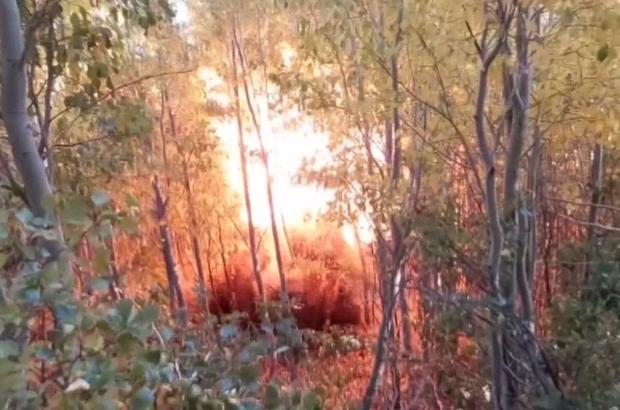 Bingöl'de 3 sığınak imha edildi, yaşam malzemeleri ele geçirildi