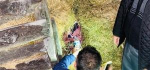 Giresun'da kaybolan kadın jandarma tarafından bulundu