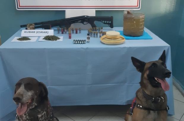 Jandarmadan 6 ilçede uyuşturucu operasyonu: 6 gözaltı
