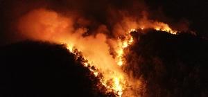 """Havalar orman yangınları için kritik süreçte Adana Orman Bölge Müdürü Mahmut Yılmaz: """"Bir kıvılcımla 100 yıllık ağaçlar yanabilir"""" """"Adana'da 7 buçuk milyon fidanı bu sene toprakla buluşturacağız"""""""