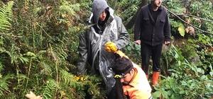 Yaban mersini toplamaya gitmişlerdi bu sabah bulundular Trabzon'un Hayrat ilçesinde kaybolan iki genç sabah saatlerinde ormanlık alanda bulundu