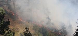 Kastamonu'da iki farklı noktada 3 gündür devam eden orman yangını söndürülemiyor 3 gündür devam eden orman yangını yayla evlerine kadar ulaştı