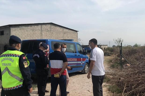 Ceyhan'da ağaç kesme kavgası: 2 ölü 4 yaralı