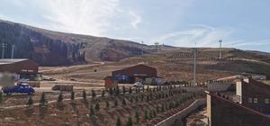 Kayak tesisine bin 100 ağaç
