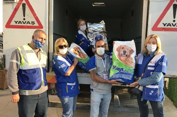 Bayraklı'da depremden etkilenen sokak hayvanlarına 1 buçuk ton kuru mama