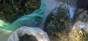Sakarya'da 2 kilo 600 gram uyuşturucu madde ele geçirildi: 3 gözaltı Jandarma ekipleri uyuşturucu tacirlerine göz açtırmıyor
