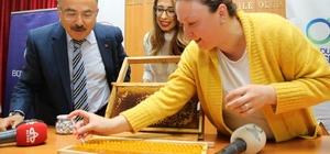 Kadın çiftçilerin arı sütü başarısı Ordu'da 75 kadın çiftçi, aldıkları eğitim sonrası üretimine başladıkları arı sütünden 18 ayda 800 bin lira gelir elde etti