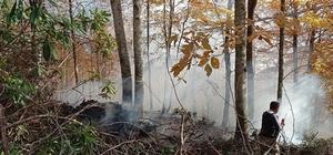 Düzce'de orman yangını 3 saatte söndürüldü Yığılca'da 3 günde 3'üncü orman yangını 7 dönümlük alan kül oldu