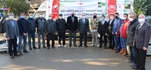 Yalova'da kivi üretimi yaygınlaştırılıyor