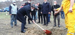 Tokat'ta 80 bin ceviz fidanı toprakla buluşturuldu