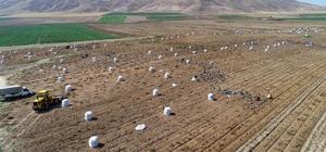 Erzincan havzasında 2021 yılında desteklenecek ürünler belli oldu