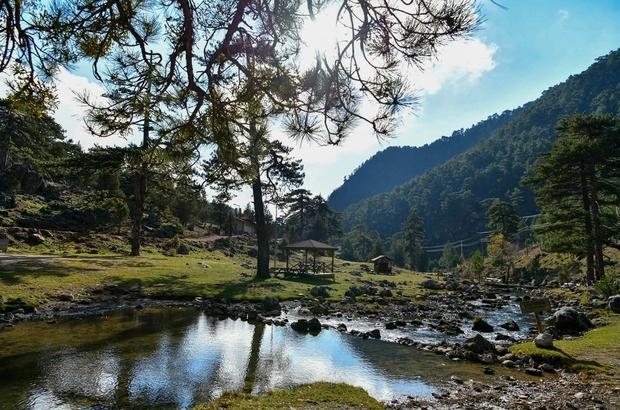 Başpınar Tabiat Parkı tam bir oksijen deposu 3 bin 950 dekarlık alan eşsiz güzellik sunuyor