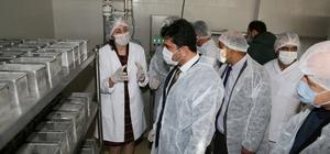 ADÜ Ziraat Fakültesi Kaşar Peyniri Üretim Tesisi açılışı gerçekleşti