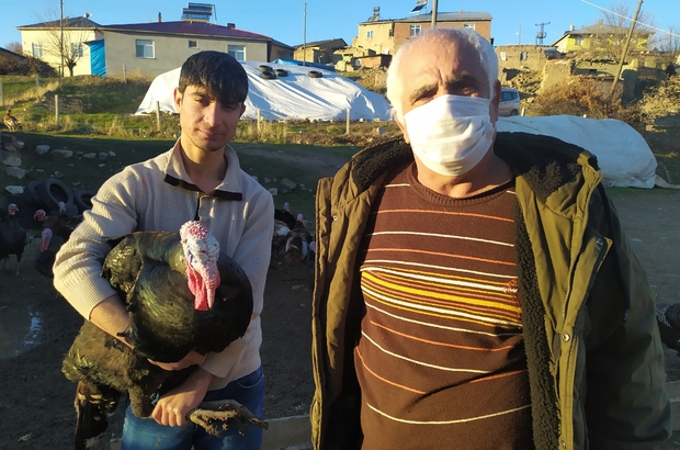 Elazığ'da pandemi ve yasaklar hindiye talebi azalttı