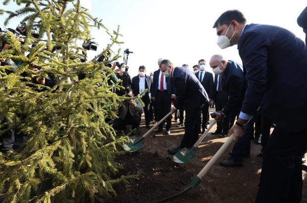 """Millet bahçesinin ilk fidanını bakan Murat Kurum dikti Çevre ve Şehircilik Bakanı Murat Kurum: """"2023'ün, 2053'ün, 2071'in Türkiye'sini yeşil ağlarla örüyoruz"""" """"İnşallah tüm millet bahçelerimizi de hızlı bir şekilde 2023 yılına kadar tamamlayacağız"""" """"Giresun'da, Elazığ'da, Malatya'da, İzmir'de afetzede kardeşlerimizin yaralarını sardık"""""""