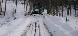 Trabzon'da karla kaplı mahalle yollarının tamamı ulaşıma açıldı