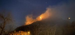 Ordu'da ormanı yangını