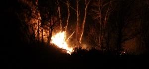 """Ordu'daki orman yangınına müdahale sürüyor Mahalleliler: """"Yangına müdahale şansımız yok, giderek büyüyor"""""""
