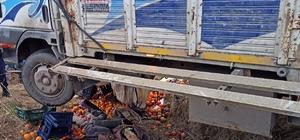 Virajı alamayan meyve yüklü kamyon şarampole uçtu: 2 ölü, 2 yaralı