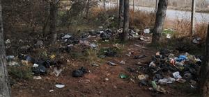 Ormanlık alan çöplüğe dönüştü Eskişehir'in akciğerleri çöple doldu