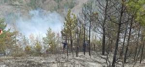 Fındık bahçesinde yakılan anız ormana sıçradı, yangına müdahale ediliyor Kastamonu'da üç ayrı noktada ormanlık alanda yangın başladı
