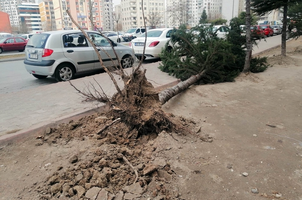 Kayseri'de kuvvetli rüzgar ağaçları söktü, çatıları uçurdu Ağacın sökülerek park halindeki aracın üstüne devrilmesi güvenlik kamerasında