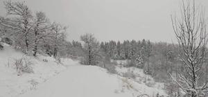 Kastamonu'da köylerin yarısının yolu kar yağışı nedeniyle kapandı Kastamonu'da 501 köy yolu kar sebebiyle ulaşıma kapandı
