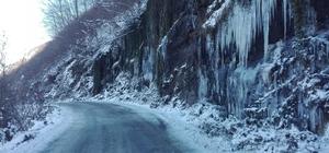 Ordu'dan 'donduran' görüntü Sibirya'yı andıran görüntülerde dere dondu, kayalıklardan akan sular buz kütlelerine dönüştü