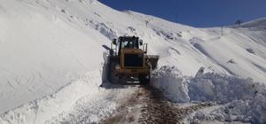 Diyarbakır'da karla mücadele çalışmaları sürüyor