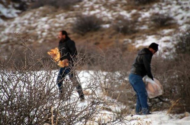 Tüfekle değil ekmek dağlara çıktılar Sivas'ta bir grup esnaf yağan kar nedeniyle doğada beslenme güçlüğü çeken yabani hayvanlar için doğaya ekmek, buğday ve arpa bıraktı