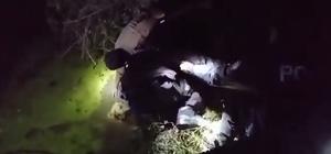 Kanala düşen köpeklerin imdadına polisler yetişti 2 metre derinliğindeki kanalda mahsur kalan 4 köpeği kurtardılar