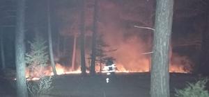 Adana'da ormanlık alanda yangın