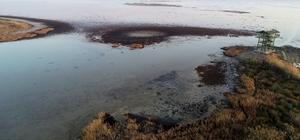 Doğa harikası lagün mikrop saçıyor 'Kesin korunacak hassas alan' olarak tescil edilen Akyatan Lagünü'nün suları çekildi, çöp yuvası oldu