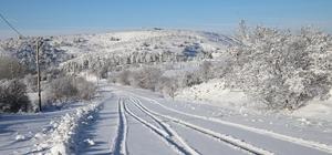 Elazığ'da yoğun kar yağışı, 269 köy yolunu kapattı