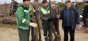 Kocaeli'de tarım ve hayvancılığı milyonluk destek