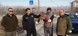 Yaralı Puhu kuşu tedavi altına alındı Sivas'ın Akıncılar ilçesinde bir vatandaş tarafından yaralı halde bulunan puhu kuşu tedavi altına alındı