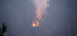 Kastamonu'da 3 ev ve ormanlık alanı kül eden yangın sürüyor Rüzgarın etkisiyle büyüyen yangında 2 köy boşaltıldı