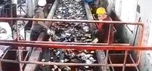 Ordu'da bebek cesedinin çöpte bulunma anı kamerada