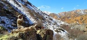 Teröristlere göz açtırmıyorlar Sivas'ın Divriği ilçesi kırsalında komandolar arazi tarama faaliyeti gerçekleştirdi