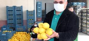 Mersin'de limon hasadı tamamlandı Türkiye'nin limon üretiminin yaklaşık yüzde 60'ının yapıldığı Mersin'in Erdemli ilçesinde limonlar hasat edilerek depolarda dinlenmeye alındı