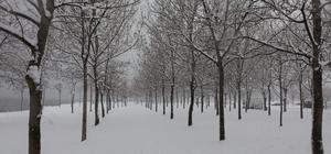 Beyaz örtüyle kaplanan Kocaeli'de kartpostallık manzaralar Karla buluşan Kocaeli'de güzel görüntüler oluştu