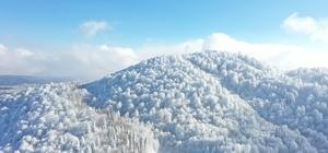 Sanayi kenti kar kalınlığında Doğu'yu solladı Kar kalındığı 104 cm'e ulaşan Kartepe Doğu illerini geride bıraktı