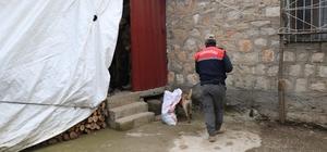 Diyarbakır'da dev uyuşturucu operasyonu: 1 milyon 258 bin kök kenevir ve 1 ton 734 kilo uyuşturucu ele geçirildi Uyuşturucuların sahiplerine yönelik 10 ayrı adrese düzenlenen eş zamanlı operasyonda 5 şüpheli gözaltına alındı