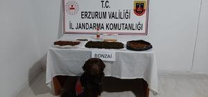 Erzurum'da yapılan operasyonlarda uyuşturucuya geçit verilmedi